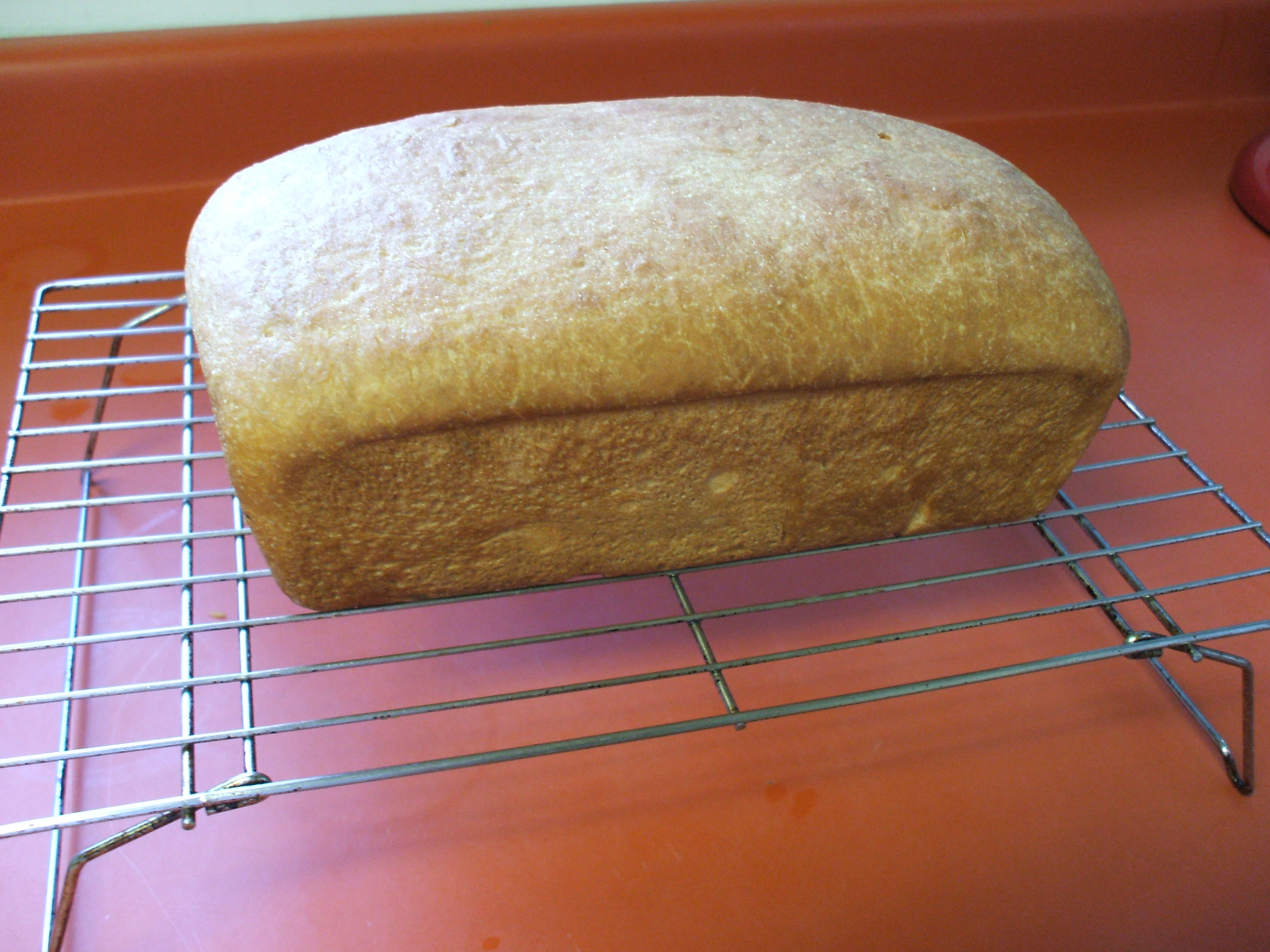 Bread Baked from Scratch
