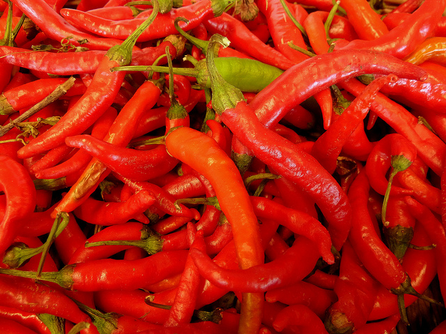 A bunch of fresh red cayenne peppers